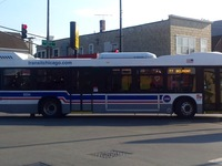 Bus #8224 at Belmont and Kimball, working route #77 Belmont, on June 23, 2016.